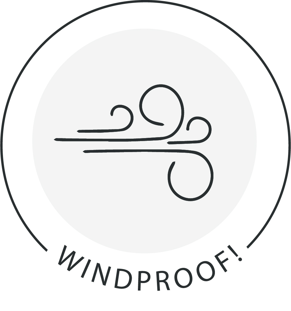 Icon showing the wind blowing